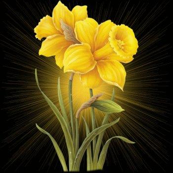 Bildergebnis für flowers gifs