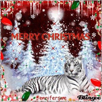 Holiday   Christmas. Tags: Tiger